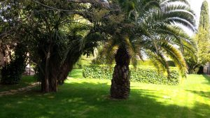 IMG_4730-jardin